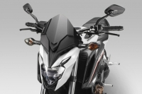 DPM WARRIOR Windschild HONA CB650 F RC97 ab 2017
